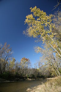 Vermilion River Kickapoo.jpg
