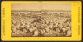 View from Bunker Hill monument, from Robert N. Dennis collection of stereoscopic views 4.png