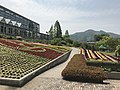 View in front of greenhouse in Innoshima Flower Center 1.jpg