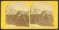 View of Charlestown Navy yard yard showing piles of cannonballs, from Robert N. Dennis collection of stereoscopic views.png