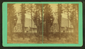 View of a church in the woods, from Robert N. Dennis collection of stereoscopic views.png