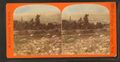 View of valley, from Robert N. Dennis collection of stereoscopic views 2.png
