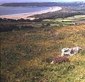 View to Oxwich Bay from Cefn Bryn - geograph.org.uk - 663455.jpg