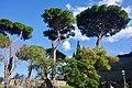 Villa Barberini Pontifical Gardens, Castel Gandolfo (46752990792).jpg