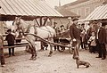 Vilnia, Zarečča, Rynak. Вільня, Зарэчча, Рынак (J. Bułhak, 1915).jpg