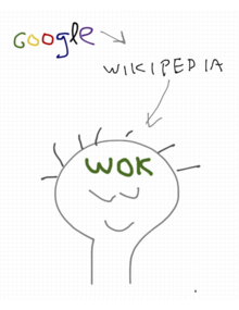 WOK project concept defined