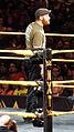 WWE NXT 2015-03-28 00-32-22 ILCE-6000 4029 DxO (17180742039).jpg
