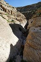 Wadi-Makukh-545.jpg