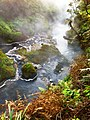Waikite Valley source of springs, near Rotorua, North Island, New Zealand - panoramio.jpg