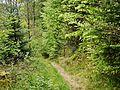 Wanderweg - panoramio (48).jpg