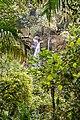 Waterfall Boquete (27238155701).jpg
