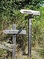 Weg6 Kirchbachspitze1.jpg
