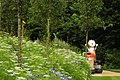 Wenlock in the gardens (7656985046).jpg