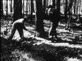 File:Westerbork 1944 (Acte 4).webm