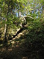 White Pines Forest State Park Spring Creek4.JPG