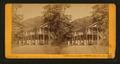 White Sulphur Springs, Napa Co. Cal, by J. G. Brayton 5.png