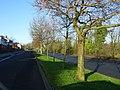 Whitewell Road - geograph.org.uk - 1111818.jpg