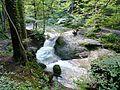 WikiProjekt Landstreicher Geotop Scheidegger Wasserfälle 40.jpg