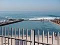 Wikimania 2018, Cape Town ( 1050508).jpg