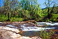 Willamina Creek (Yamhill County, Oregon scenic images) (yamDA0099).jpg