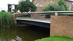 Willy den Oudenstraatbrug - Terbregge - Hillegersberg-Schiebroek - Rotterdam - View of the bridge from the west.jpg