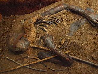 Windeby I bog body found preserved in a peat bog near Windeby, Northern Germany