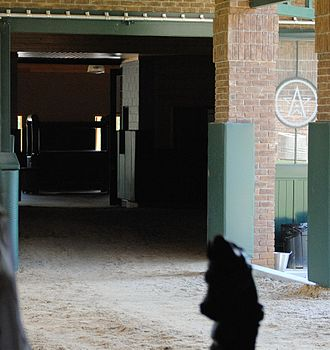 WinStar Farm - Breeding shed