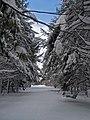 Winter at Moosehorn (11714166893).jpg