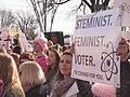 Women's March on Washington 2018 1204664.jpg