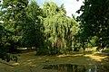 Wrocław- w parku Szczytnickim - panoramio.jpg