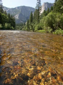 Ріка мерсед у національному парку