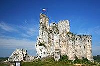 Zamek w Mirowie 12.08.08 p4.jpg