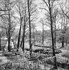 zicht vanaf het hellingbos in het processiepark over de eijserbeek met rechts het klooster - simpelveld - 20329799 - rce