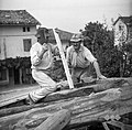 "Zidar iz Krasnega, seka ""rimul"" na strehi, Fojana 1953.jpg"