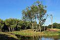 Zwin Natuurpark R30.jpg