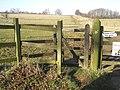 """""""Kissing Gate"""" Stile - geograph.org.uk - 700770.jpg"""
