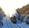 'Bittern' on the Cathedrals Express Carol Concert Special - geograph.org.uk - 1625941.jpg