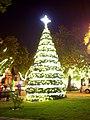 Árbol de Navidad - Municipalidad de Providencia.jpg