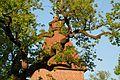 Äste der alten Eiche an der Kirche in Hittbergen.jpg