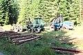 Šumava, lesní mechanizace (5).jpg