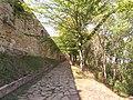 Брукована доріжка парком до Теребовлянського замку. Тернопільська область.jpg