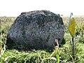 Будрэвічаў камень воранаўскі. Рэмзы (05).jpg