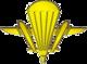 Емблема аеромобільних військ (2007).png