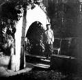 Император Николай II у грота в Александровском парке.png