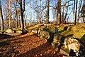 """Кладбище """"Сорвали"""". Фото 4.jpg"""