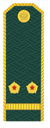 Лейтенант ФТС РФ.png