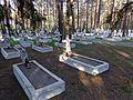 Могили польських легіонерів.jpg