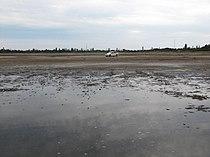 На озері Солонець-Тузли.JPG