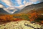 Осень в Хибинах.jpg