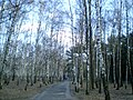 Парк воінаў-інтэрнацыяналістаў - panoramio.jpg